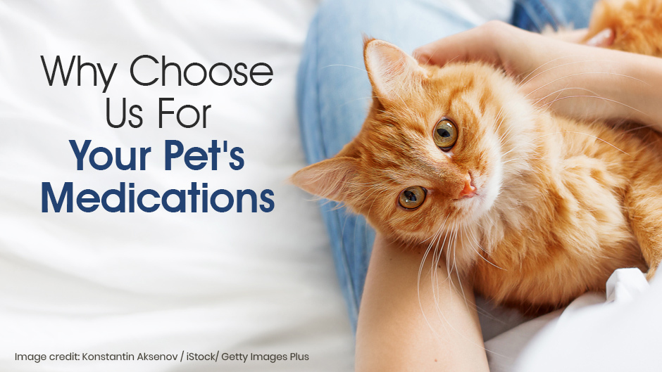 Why Choose Us For Your Pets Medications